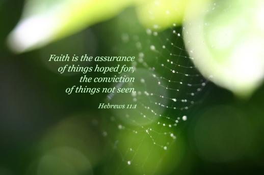Image result for hebrews 11 13